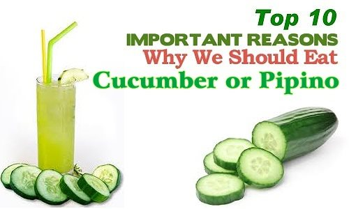 pipino or cucumber banner