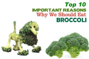 broccoli ten health benefits
