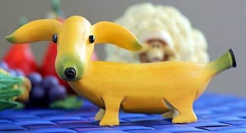 banana puppy