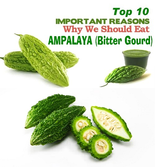 Top 10 health benefits of Ampalaya