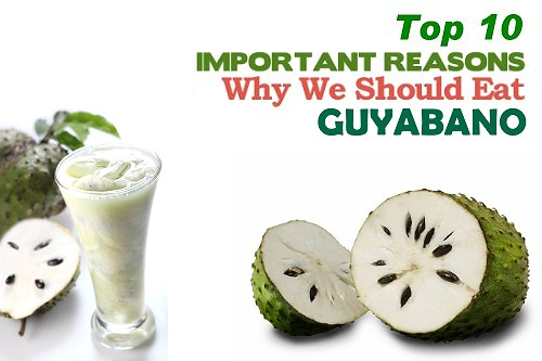 GUYABANO HEALTH BENEFITS
