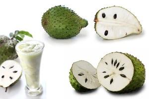 GUYABANO fruit BENEFITS