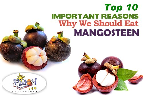 Mangosteen Health Benefits Top Ten