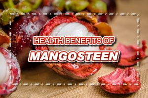 Top Health Benefits of Mangosteen