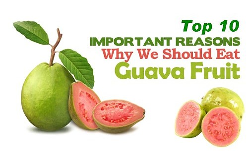 Guava Fruit Health Benefits
