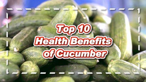 Top 10 Health Benefits of Cucumber