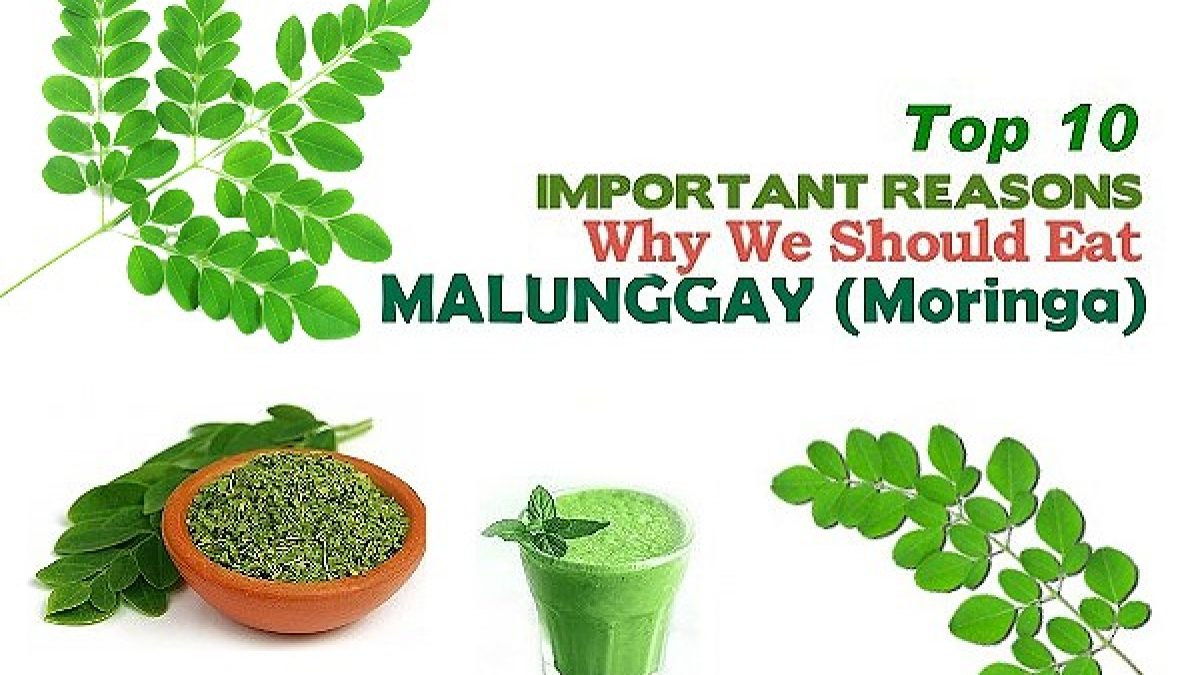top 10 health benefits of malunggay (moringa) | pinoy recipe