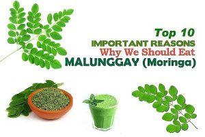Top 10 Health Benefits of Malunggay (Moringa)