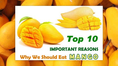 Top 10 Mango Health Benefits