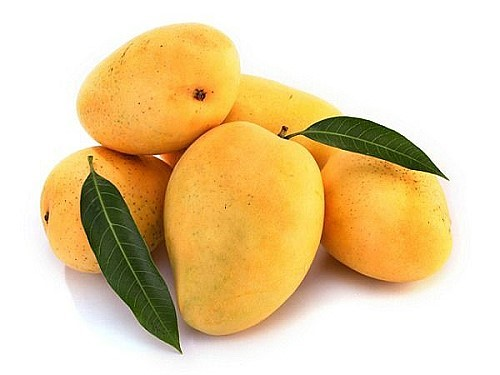 mango fruit 2