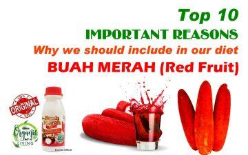 buah merah health benefits