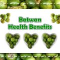 Batwan Health Benefits