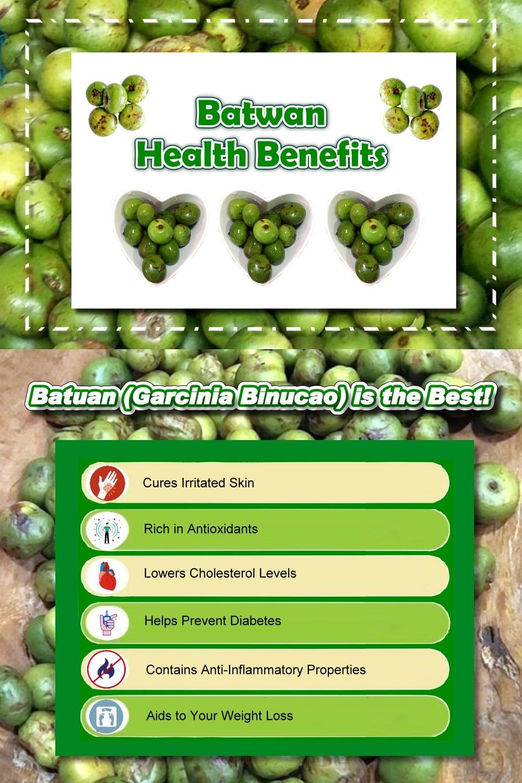 Top 6 Batwan Health Benefits