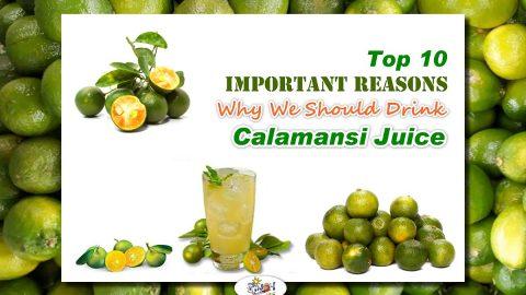 Top 10 Health Benefits of Calamansi Juice