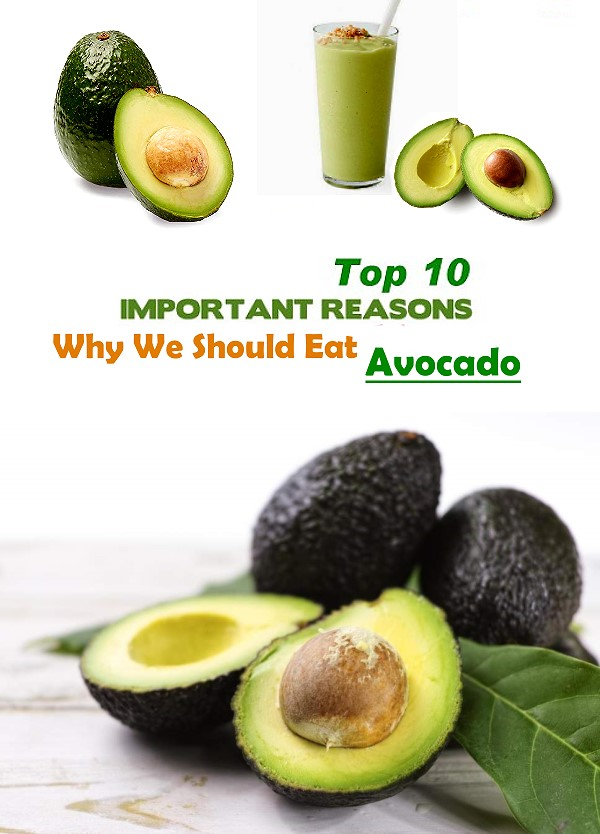 Top 10 Health Benefits of Avocado - Avocados are here to stay and they are here to stay for a lot of good reasons. Not only are avocados delicious but the reason why many should eat and love this fruit is because of its many nutritional benefits.