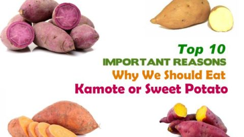 Top 10 Health Benefits of Camote or Sweet Potato